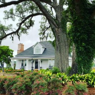 South wind plantation luxury trip